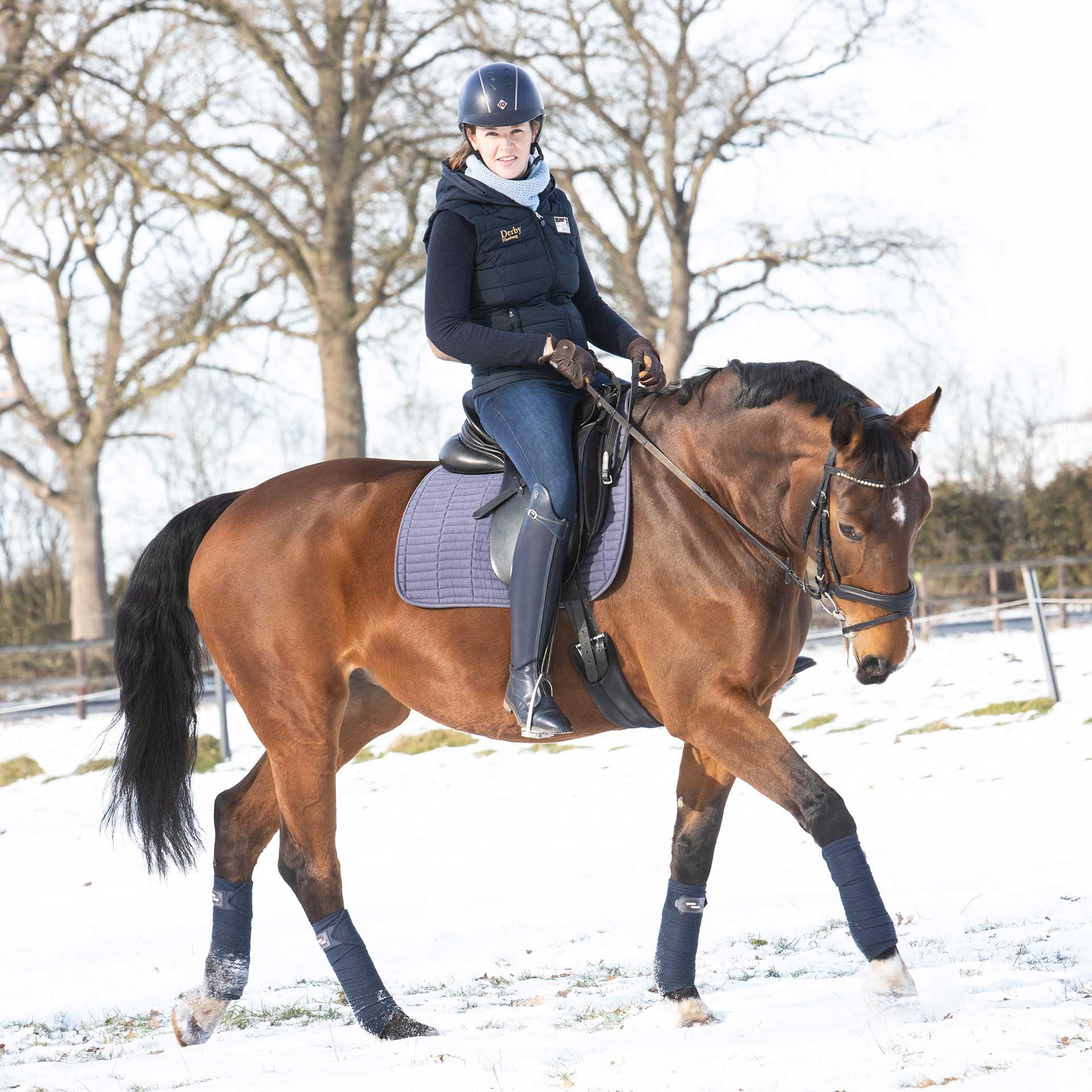 Pferd in Bewegung, angela pfeiffer Fotografin, angela pfeiffer, pferdefotografin hamburg, pferdeshooting, pferdefotografie, pferdeshooting hamburg, pferdefoto, professionelle Pferdefotos, professionelles pferdeshooting, individuelle pferdefotos, pferdeportraits, fotos turnierpferde, turnierfotos, sportpferde fotos, fotografie, sportpferdefotografie, portrait mit Pferd, Shooting mit Pferd, pferdefotografin Norddeutschland, individuelles pferdeshooting, authentisches pferdeshooting, individuelle Pferdefotografie, klassische Pferdefotografie, klassische Pferdeportraits, Sportpferd klassisch