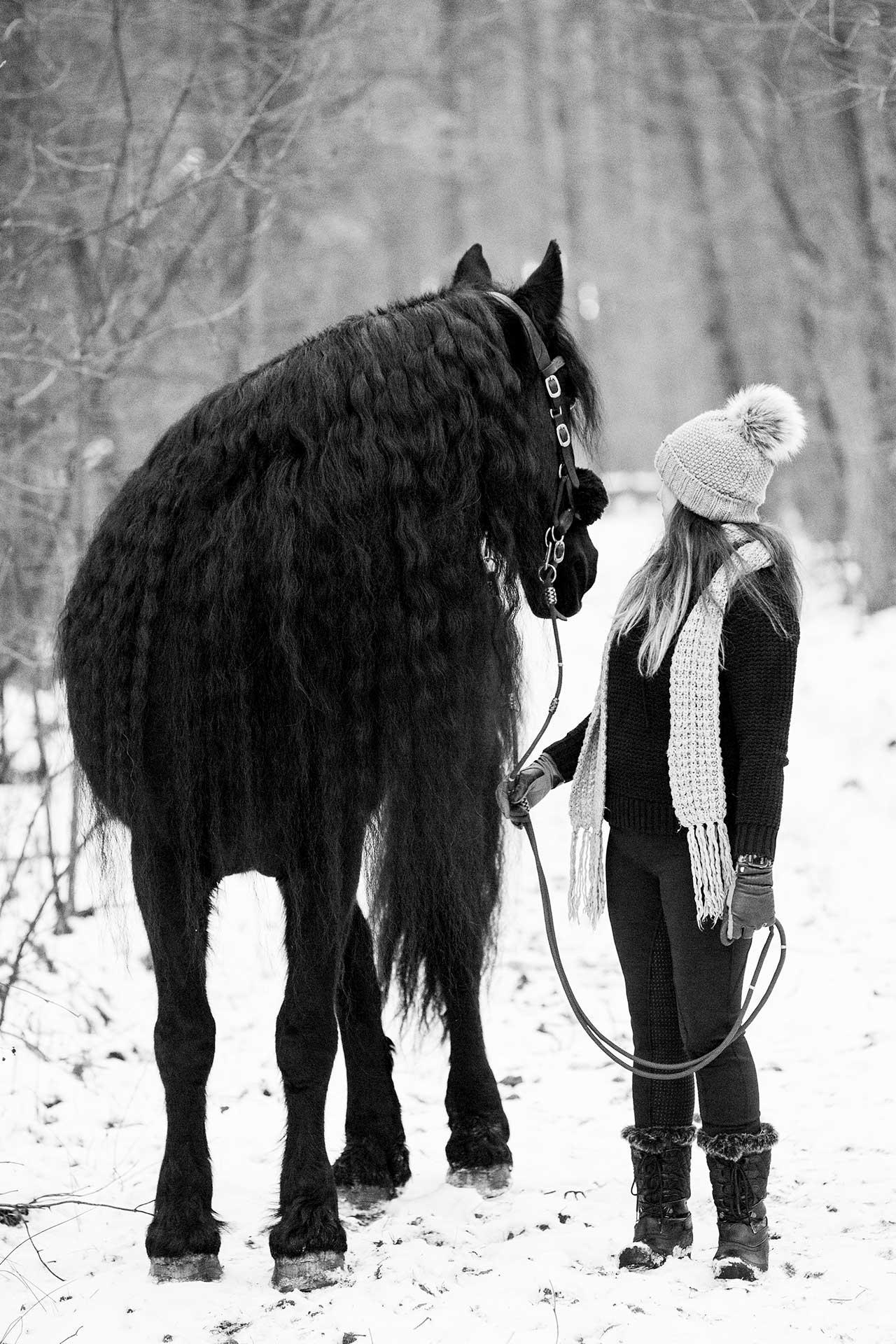 angela pfeiffer Fotografin, angela pfeiffer, pferdefotografin hamburg, pferdeshooting, pferdefotografie, pferdeshooting hamburg, pferdefoto, professionelle Pferdefotos, professionelles pferdeshooting, individuelle pferdefotos, pferdeportraits, fotos turnierpferde, turnierfotos, sportpferde fotos, fotografie, sportpferdefotografie, portrait mit Pferd, Shooting mit Pferd, pferdefotografin Norddeutschland, individuelles pferdeshooting, authentisches pferdeshooting, individuelle Pferdefotografie